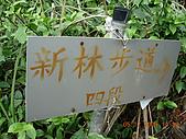 新寮步道新寮山:207.jpg