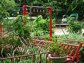 新寮步道新寮山:153.jpg