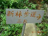 新寮步道新寮山:161.jpg