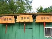 三鶯龍窯橋:28.jpg