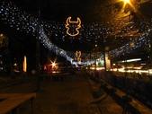2009台北燈節:牛頭燈海