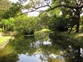春遊台北植物園:生態水池