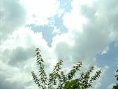 石碇之旅:雲