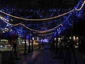 2009台北燈節:愛心燈海