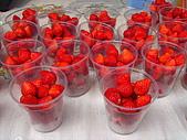 大溪風情:草莓