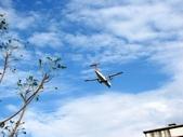 2013台北花卉展:飛機