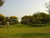 台中都會公園:綠地