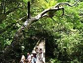 滿月圓國家森林遊樂區:滿月圓