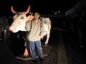 2009台北燈節:愛情牛