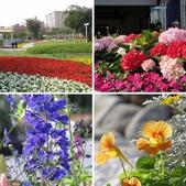 2013台北花卉展:2013台北花卉展
