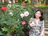 士林官邸玫瑰季:玫瑰與我