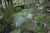 2006宜蘭綠博&波的農場:DSC_0066