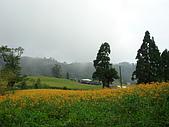 2006/8/19赤科山:赤科山06