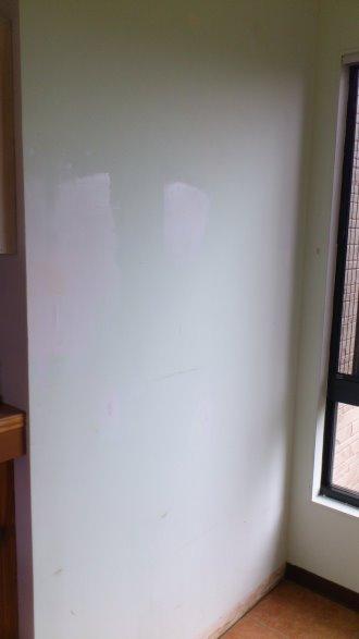 2012年底大廳入口DIY變裝:DSC_2290.jpg