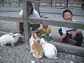 旅行系列2004/10/8(兆豐農場半日遊) :c59a