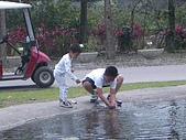 旅行系列2004/10/8(兆豐農場半日遊) :190f