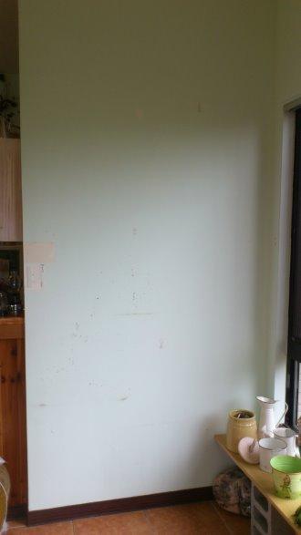 2012年底大廳入口DIY變裝:DSC_2279.jpg