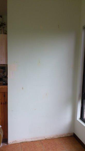 2012年底大廳入口DIY變裝:DSC_2285.jpg