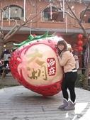 101.1.27 新春苗栗一日遊~:IMG_6627.JPG
