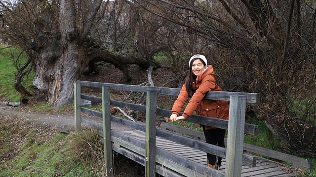 Glendhu Bay (12).JPG - Kiwi Memory