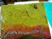 14-花東玉石:5-紅黃魚卵碧玉切片原礦