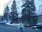 北海道踏雪尋梅之旅(第二天):DSC02028.JPG