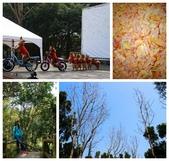 新化植物園+新化老街:新化植物園3.jpg