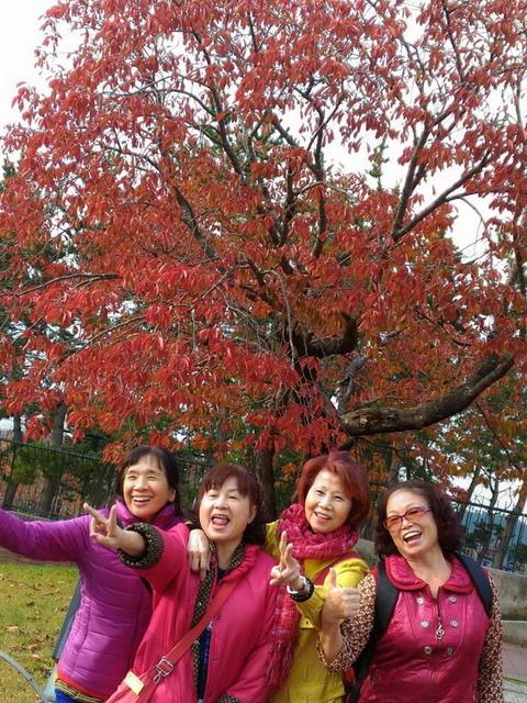 C012.jpg - 北海道旅遊