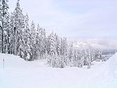 加拿大 Whistler ski trip:昨晚下過雪...