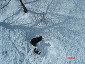 2006年2月6日苗場:在纜車上看到有熊出沒