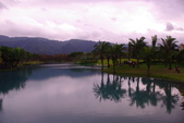 雲山水自然生態農莊:照片 9304.jpg