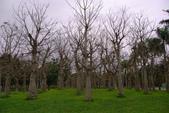 雲山水自然生態農莊:照片 9308.jpg
