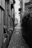 2019/6/8台南正興街老街漫遊:3V4A1736.JPG