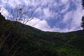 花蓮銅門『慕谷慕魚』:照片 9279.jpg