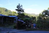 11/22阿里山吃早餐:_V4A0179.JPG