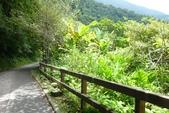 2011-07-13 內洞森林遊樂區:內洞森林遊樂區 002.JPG