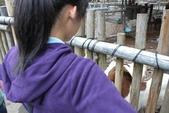 2012-11-19 六福村班遊:六福村班遊 044.JPG