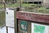 2011-12-13 關渡自然公園.淡水紅毛城:關渡自然公園.淡水紅毛城 012.JPG