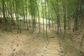 2011-08-02 天梯吊橋.竹山鎮: