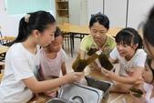2012-06-27 包粽子:包粽子 007.JPG