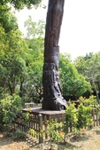 2011-08-15 蘭城新月.羅東林業文化園區:宜花東五日遊 007.JPG
