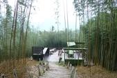 2011-07-15 綠光森林.小烏來風景區:綠光森林.小烏來風景區 004.JPG