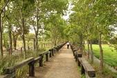 2011-08-15 蘭城新月.羅東林業文化園區:宜花東五日遊 019.JPG