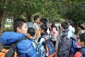 2011-12-13 關渡自然公園.淡水紅毛城:關渡自然公園.淡水紅毛城 004.JPG