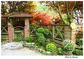 台北奧萬大:IMG_2378w2b.jpg