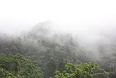 20090328 秘境‧小錦屏野溪溫泉:18. 今日山區的雲霧 很讚.JPG