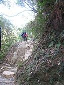 20090130~0131 北大武:15. 爾有陡上的石階.jpg