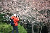 20120406 重返京都:015. 這紅衣男子不凸顯都難啊~.JPG