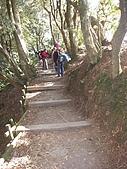 20090130~0131 北大武:18. 大家都不愛這種階梯.jpg