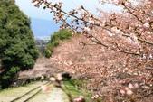 20120406 重返京都:002. 蹴上鐵道.JPG